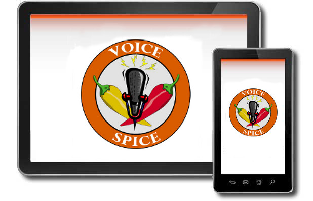 Easy Voice Recorder App